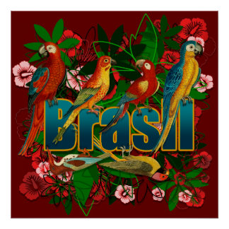 Brazil Brasil Tropical Birds of Paradise Poster