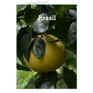 Brazil Grapefruit Card