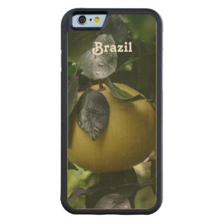 Brazil Grapefruit Carved Maple iPhone 6 Bumper Case