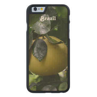 Brazil Grapefruit Carved Maple iPhone 6 Case