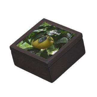 Brazil Grapefruit Gift Box