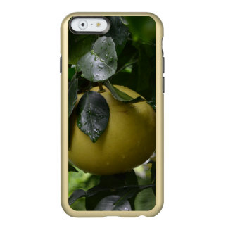 Brazil Grapefruit Incipio Feather Shine iPhone 6 Case