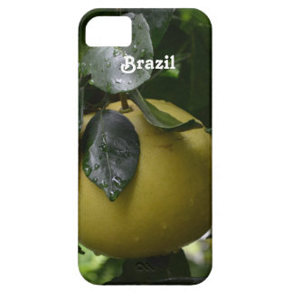 Brazil Grapefruit iPhone SE/5/5s Case