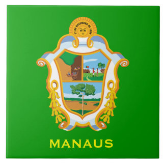 Brazil Manaus Ceramic Tile