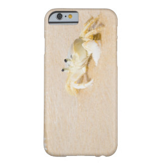 Brazil, Rio de Janeiro, Buzios, Crab on Barely There iPhone 6 Case