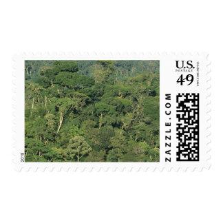 Brazil, Rio State, Serra dos Orgaos National Postage Stamp