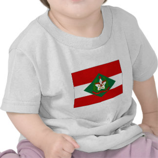 Brazil Santa Catarina Flag Shirts