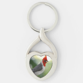 Brazilian Cardinal Key Chain
