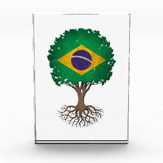 Brazilian Flag Tree of Life Customizable Acrylic Award