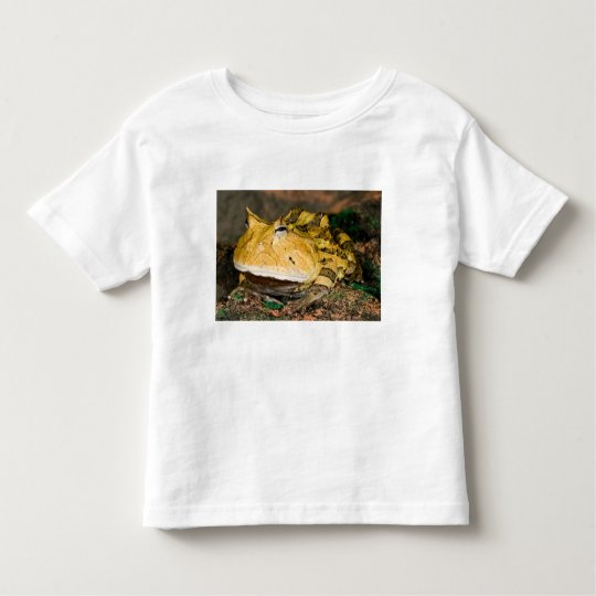 Brazilian Horn Frog, Ceratophrys cornuta, 3 Toddler T-shirt