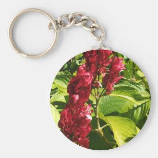 Brazilian Red Cloak Keychain
