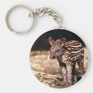 Brazilian Tapir, young calf beside river Keychain