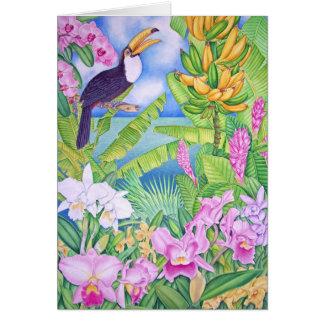 Brazilian Toucan in the Amazon Card
