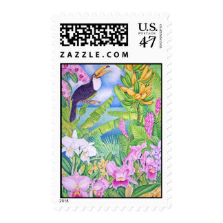 Brazilian Toucan in the Amazon Postage Stamp