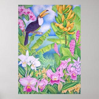 Brazilian Toucan in the Amazon Poster