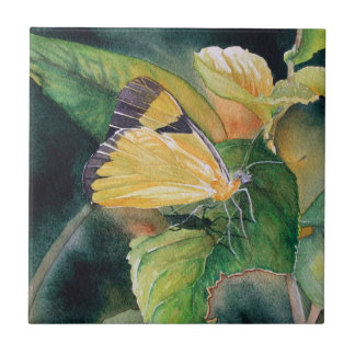 Brazilian Yellow Butterfly Fine Art Ceramic Tile