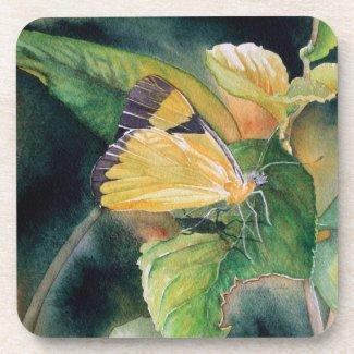 Brazilian Yellow Butterfly Fine Art Coasters