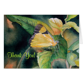 Brazilian Yellow Butterfly Greeting Card