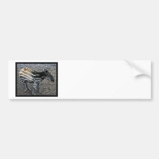 Brazillian Tapir Bumper Sticker