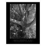 Brazo Outstretched Posters