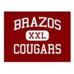 Brazos - Cougars - High School - Wallis Texas Postcard