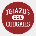Brazos - Cougars - High School - Wallis Texas Sticker