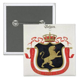 Brazos de la familia real belga, de un collectio pin cuadrada 5 cm