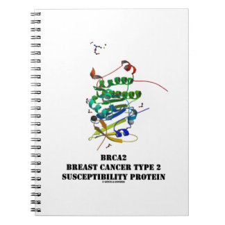 BRCA2 Breast Cancer Type 2 Susceptibility Protein Notebooks