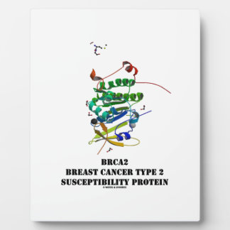 BRCA2 Breast Cancer Type 2 Susceptibility Protein Plaque