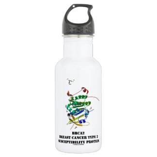 BRCA2 Breast Cancer Type 2 Susceptibility Protein Stainless Steel Water Bottle