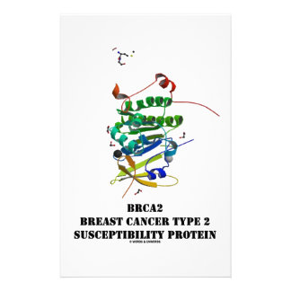 BRCA2 Breast Cancer Type 2 Susceptibility Protein Stationery