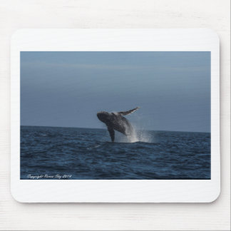 Breach for Love Humpback Whale gifts Mouse Pad