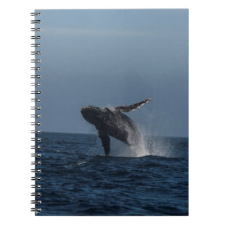 Breach for Love Humpback Whale gifts Spiral Notebook