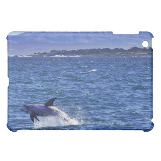 Breaching Dolphin-Pacific Grove iPad Case