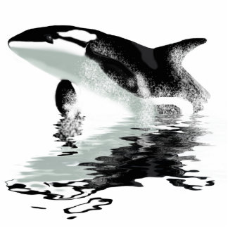 """BREACHING ORCA"" Killer Whale Photo Sculpture"