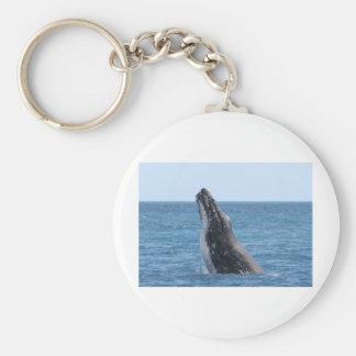 Breaching Whale Basic Round Button Keychain