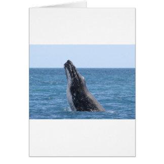 Breaching Whale Card