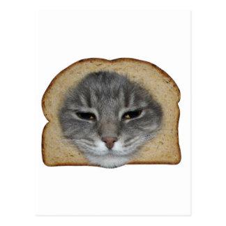 Breaded Cat Postcard