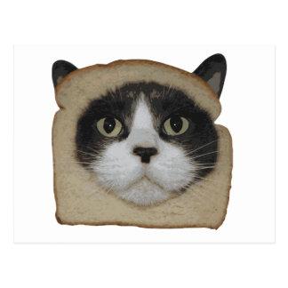 Breaded Inbread Cat Breading Postcard