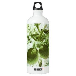 Breadfruit Jungle Graphic Art Water Bottle