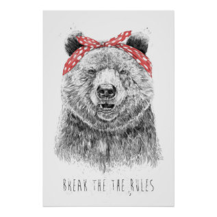 Break The Rules Poster at Zazzle