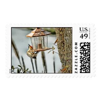 Breakfast at Tiffanys Postage Stamp