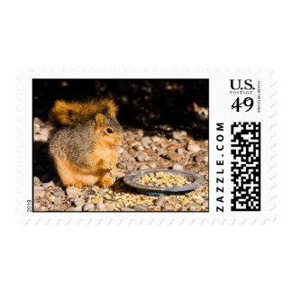 Breakfast Is Served Postage Stamp