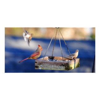 Breakfast Table (birds) Photo Card