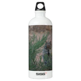 Breakfast Water Bottle
