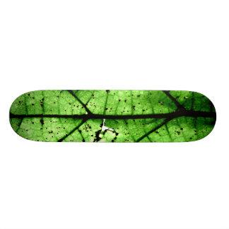 """""""Breakthrough"""" JTG Art Skateboard"""