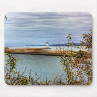 Breakwall Through the Trees Mouse Pad