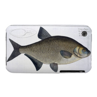 Bream Cyprinus Brama plate XIII from Ichthyolog Case-Mate iPhone 3 Cases