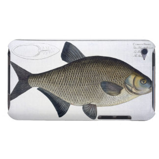 Bream (Cyprinus Brama) plate XIII from 'Ichthyolog iPod Touch Case-Mate Case