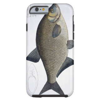 Bream (Cyprinus Brama) plate XIII from 'Ichthyolog Tough iPhone 6 Case